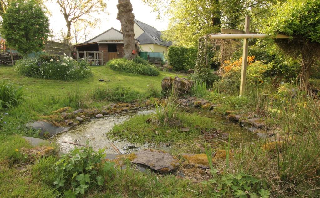 Dans mon jardin aussi, on y trouve... Img_8710