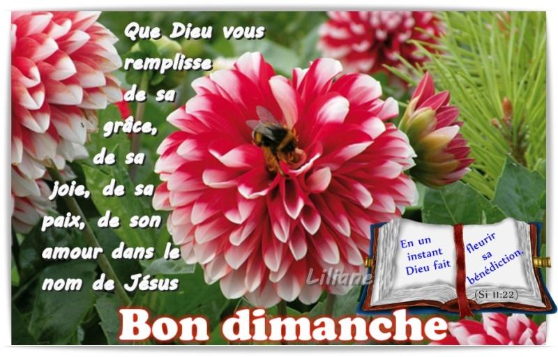 """*** """" Bon et Saint Dimanche à tous """"  *** Fd897510"""