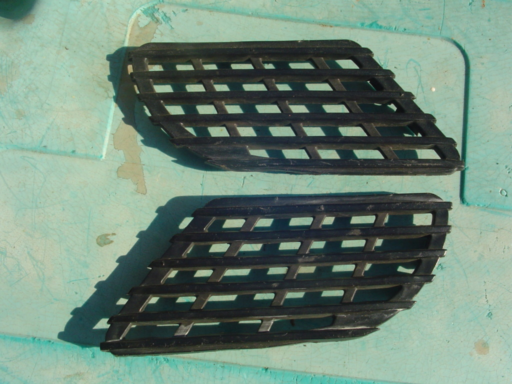 black grille Dsc06712