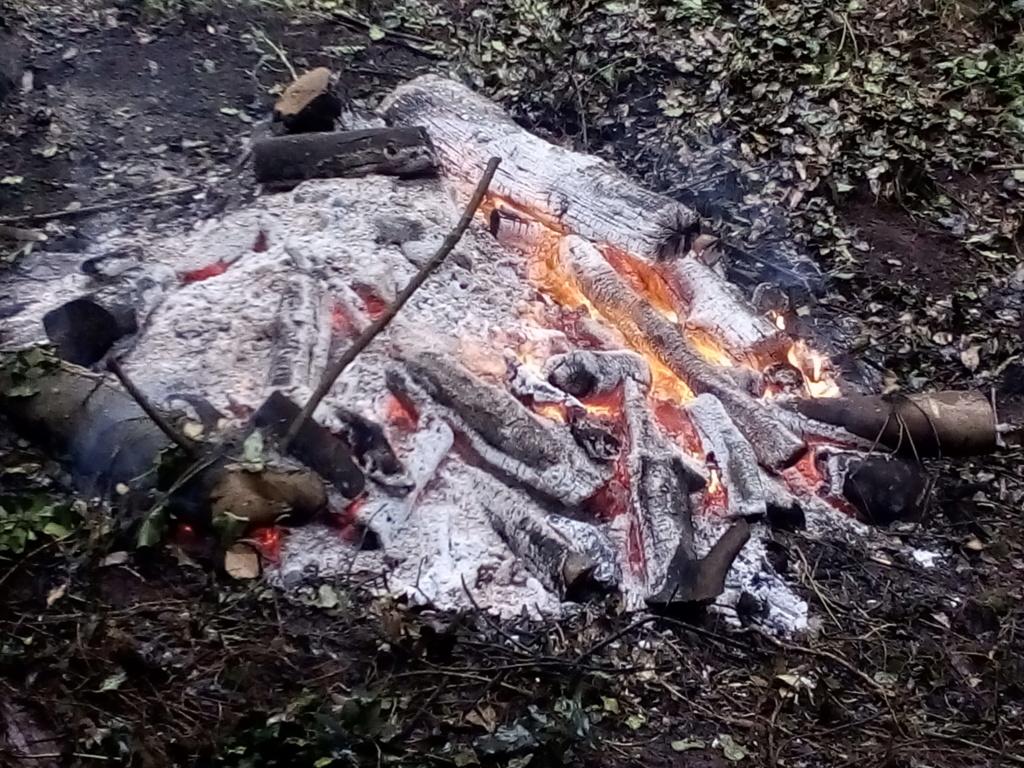 Camping / overnight stays 15902010