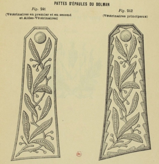Le dolman dans l'armée française 1872-1914 Epaule10