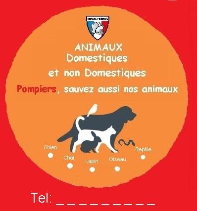 Affiche pompiers nos animaux Auto-c11