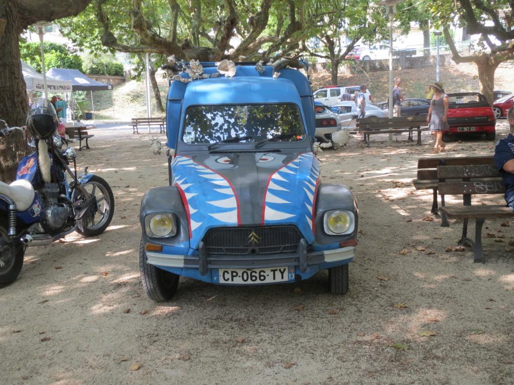 rassemblement aux Taillades (Gard)  Img_6385