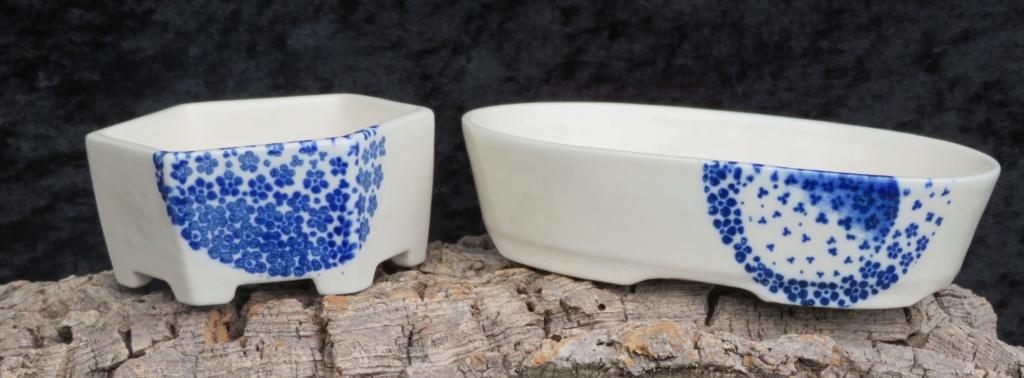 latest pots  Img_0215