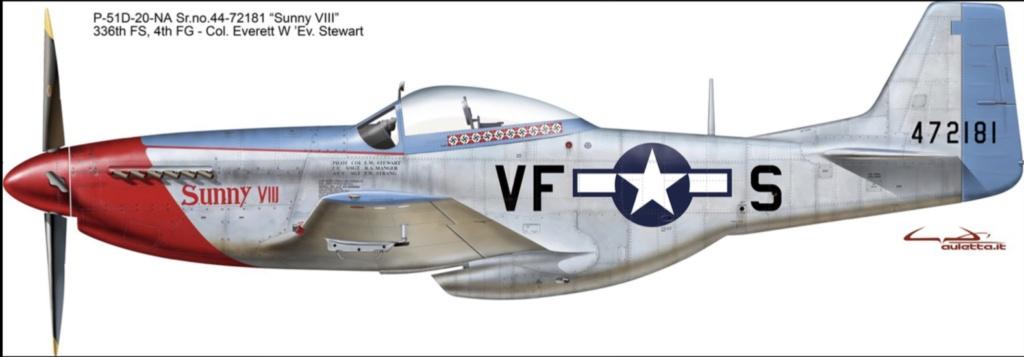 NORTH AMERICAN P-51 MUSTANG 511f5910