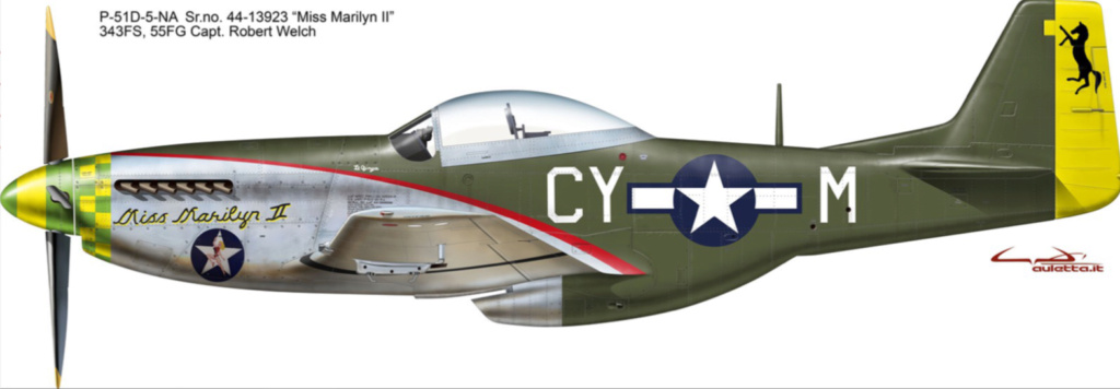 NORTH AMERICAN P-51 MUSTANG 82025a10