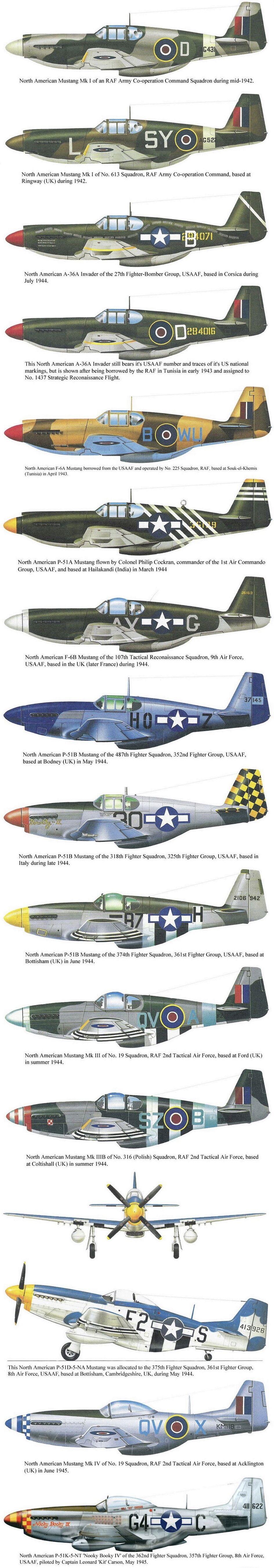 NORTH AMERICAN P-51 MUSTANG D6834c10