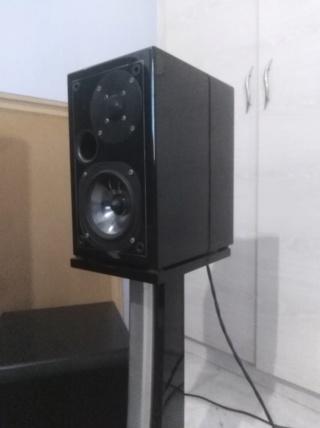 Tube hifi set Cayin Usher amplifier speaker Img_2071
