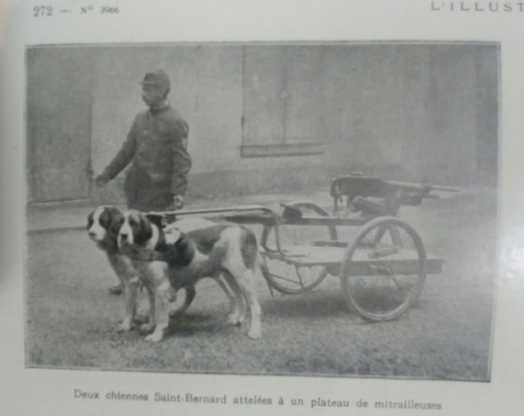 """Mitrailleuse mdle 1907 T ''St Étienne""""  - Page 3 20210410"""