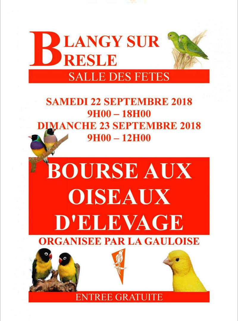 Bourse aux oiseaux d'élevage, Blangy sur Bresle 22 & 23 septembre 2018 Bourse10