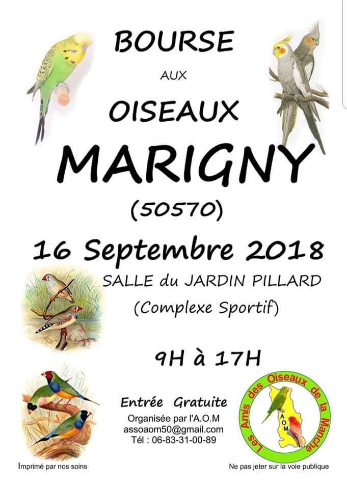 Bourse aux oiseaux, Marigny le 16 septembre 2018 Bourse12