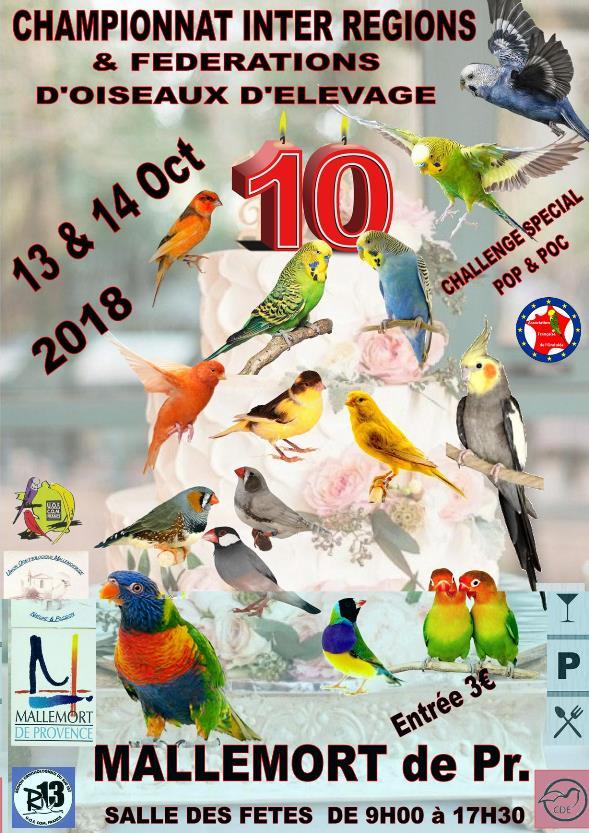 Championnat inter régions & fdérations, Mallemort 13-14 octobre 2018 Champi11