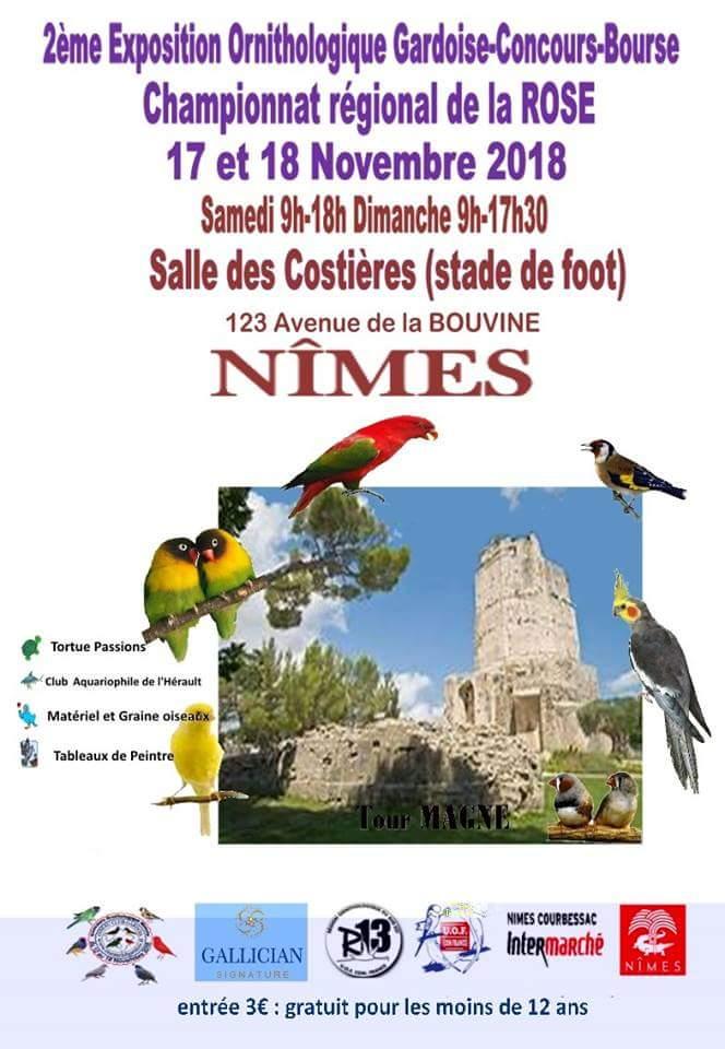 Championat régional de la Rose, Nîmes le 17 et 18 novembre 2018 Champi12