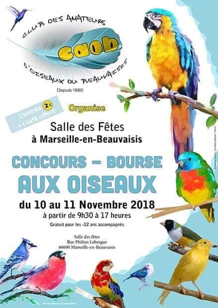 Concours-Bourse aux oiseaux, Marseille-en-Beauvaisis 10/11 novembre 18 Concou12