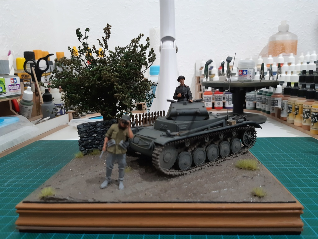 Panzer II - Page 3 20190619