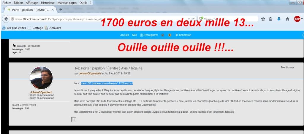 PORTES «PAPILLON»-élytre + + +: qui fait ça et pour combien? 206ccp12
