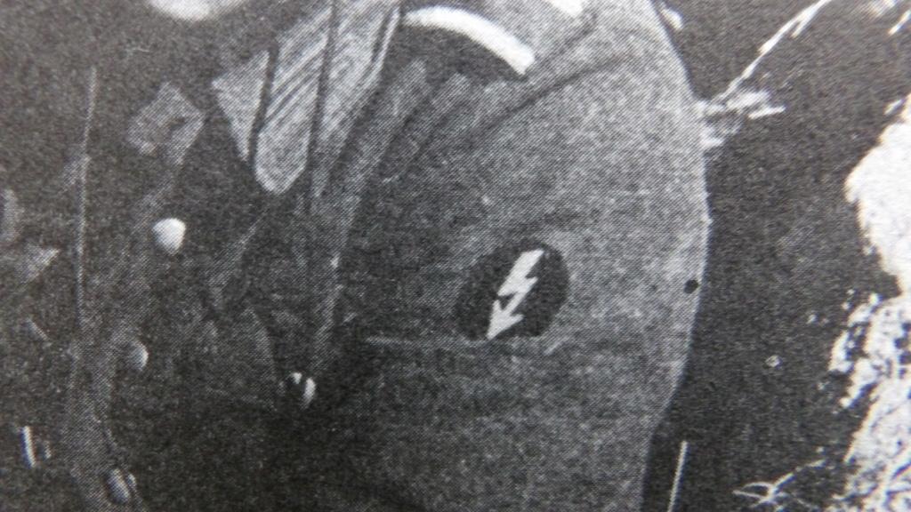 Insigne de bras d'officier allemand à identifier 100_4856
