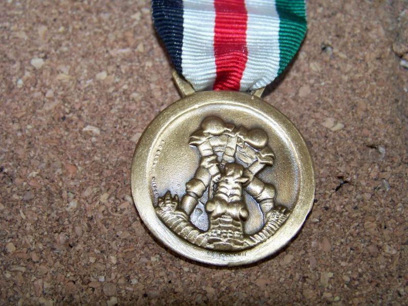Médaille Afrikakorps 100_4911