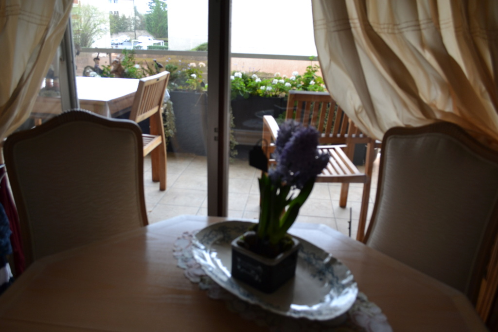 balcon chez Hugo Dsc_4618
