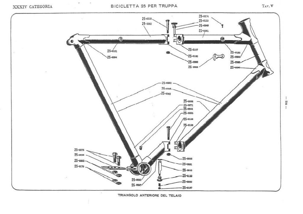 Bianchi - Bersaglieri Battaglione ciclisti  Catalo14
