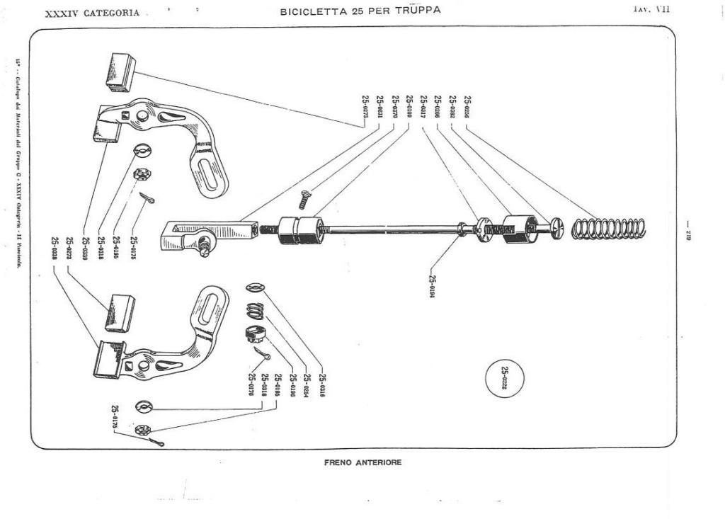 Bianchi - Bersaglieri Battaglione ciclisti  Catalo17