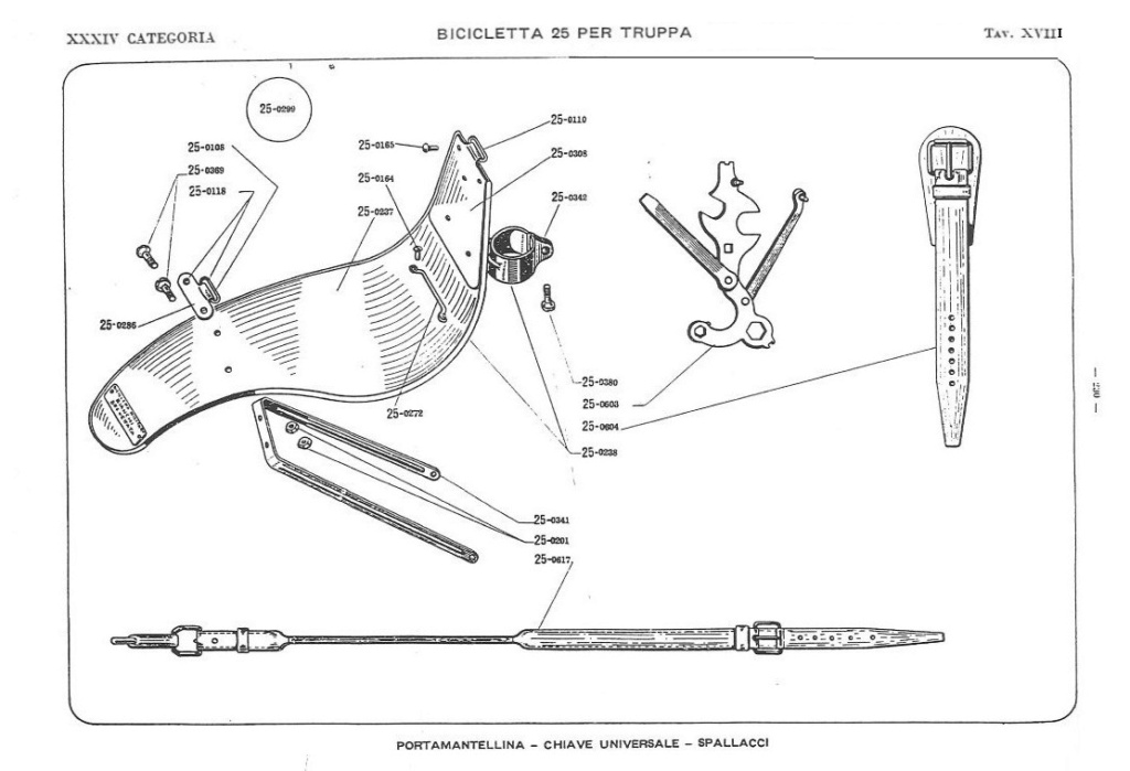 Bianchi - Bersaglieri Battaglione ciclisti  Catalo28