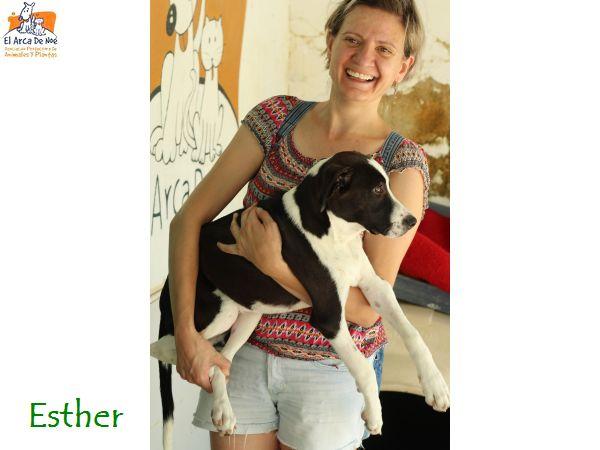 ESTHER - CROISÉE - (SOLE) Esther10