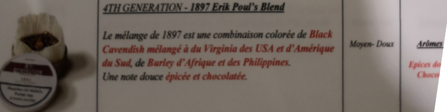 Civette à Ivry sur Seine (94) 4th_ge10