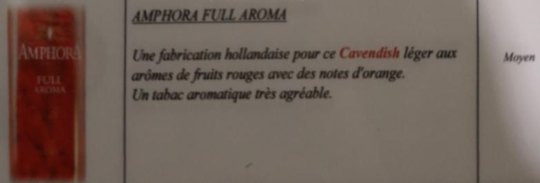 Civette à Ivry sur Seine (94) Amphor10