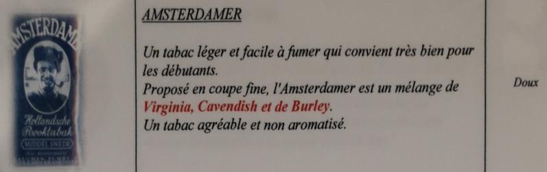 Civette à Ivry sur Seine (94) Amster10