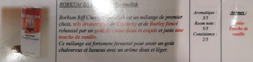 Civette à Ivry sur Seine (94) Br_che10
