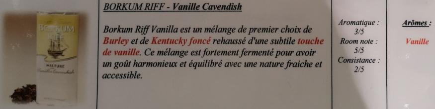 Civette à Ivry sur Seine (94) Br_van10