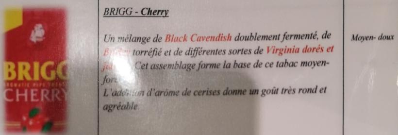 Civette à Ivry sur Seine (94) Brigg_10