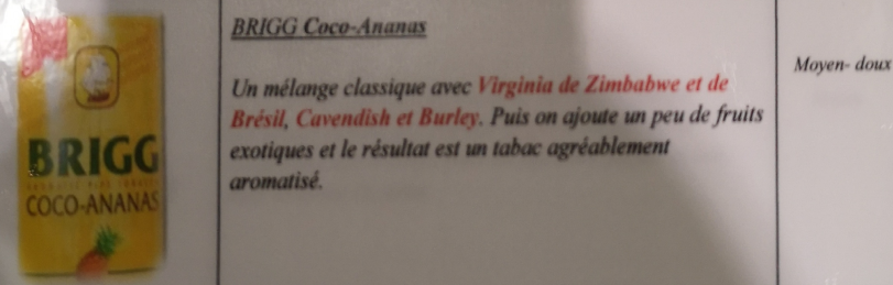 Civette à Ivry sur Seine (94) Brigg_11