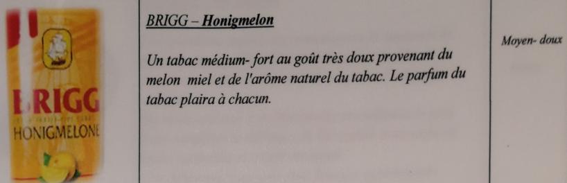 Civette à Ivry sur Seine (94) Brigg_12