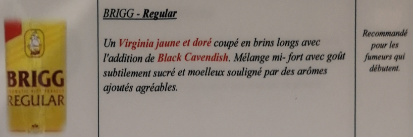 Civette à Ivry sur Seine (94) Brigg_13