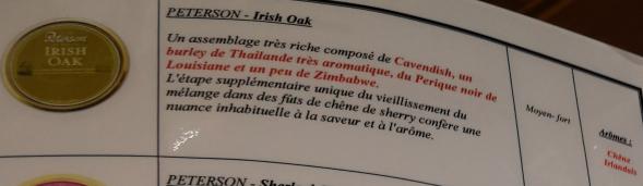 Civette à Ivry sur Seine (94) Peters13