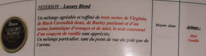 Civette à Ivry sur Seine (94) Peters16