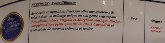Civette à Ivry sur Seine (94) Peters18