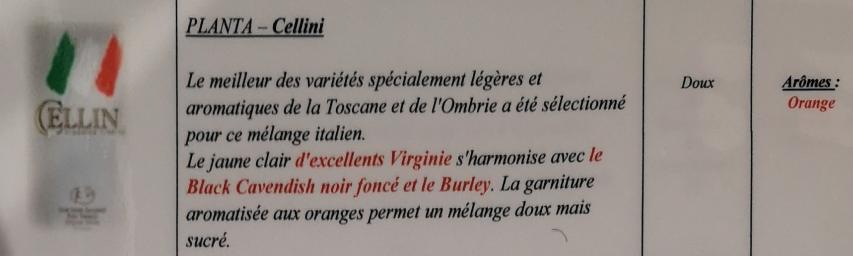 Civette à Ivry sur Seine (94) Planta11