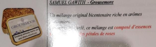 Civette à Ivry sur Seine (94) Samuel16