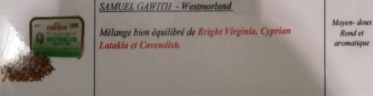 Civette à Ivry sur Seine (94) Samuel20