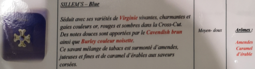 Civette à Ivry sur Seine (94) Sillem11