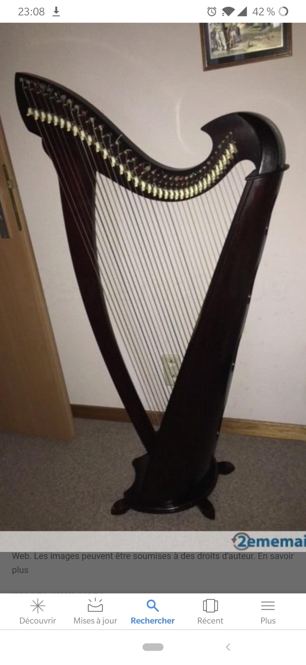 Pouvez vous m'aider à identifier cette harpe ? Screen10
