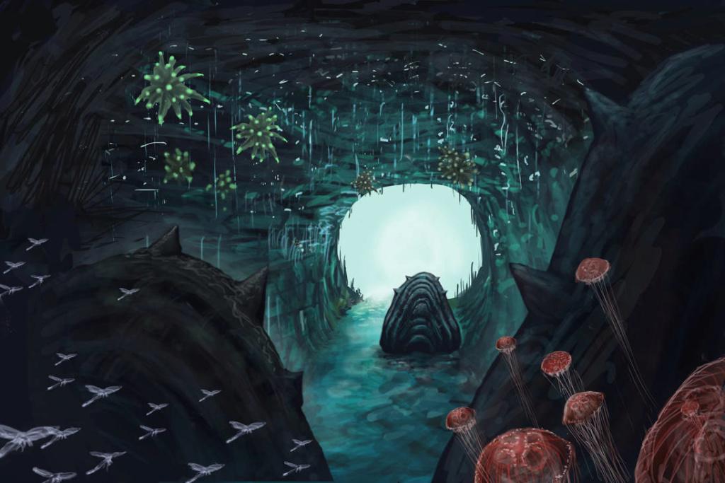 Capítulo 1: Como chegar à estação? - Página 2 Nausic10
