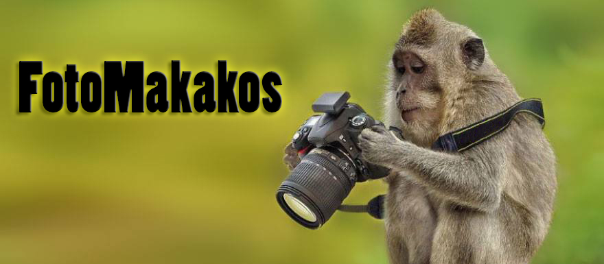 Fotomakakos