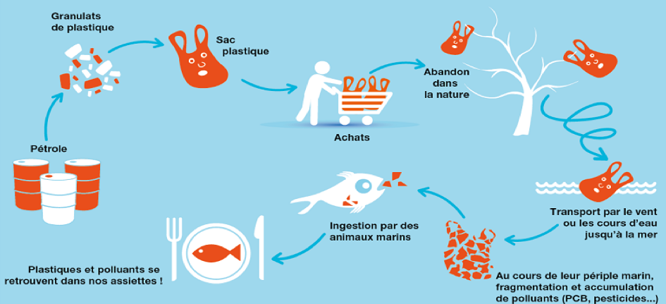 Comment l'utilisation des matières biodégradables aidera à diminuer la pollution de l'eau ? Hdhdhd10