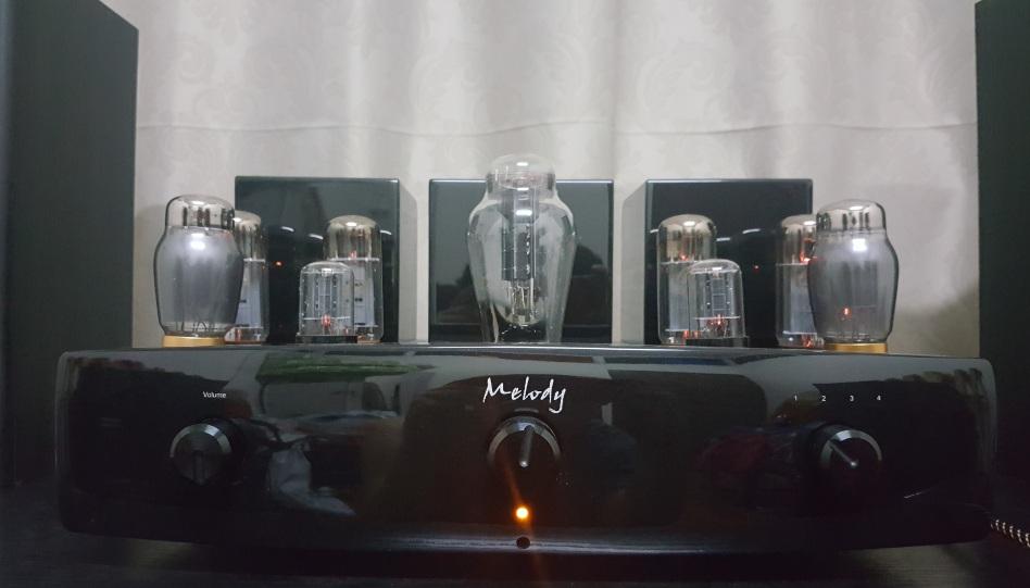 Melody Super 34 Tube Amp (EL34) (Used) Tube0110