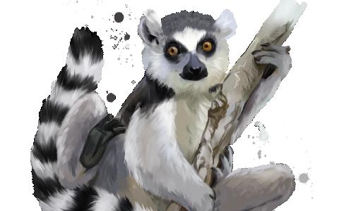 [Genin] Aburame Yorusuke Lemure10