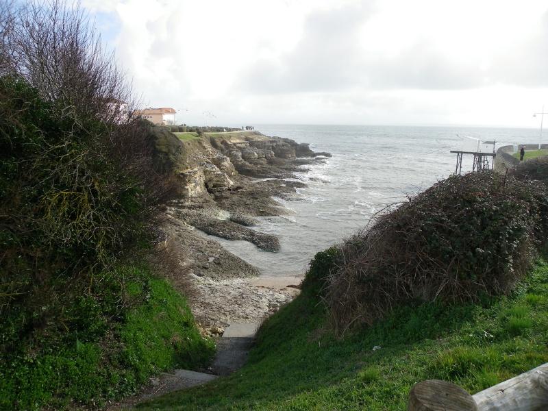 La côte et ses plages entre Royan et Nauzan par le GR4 Imgp5230